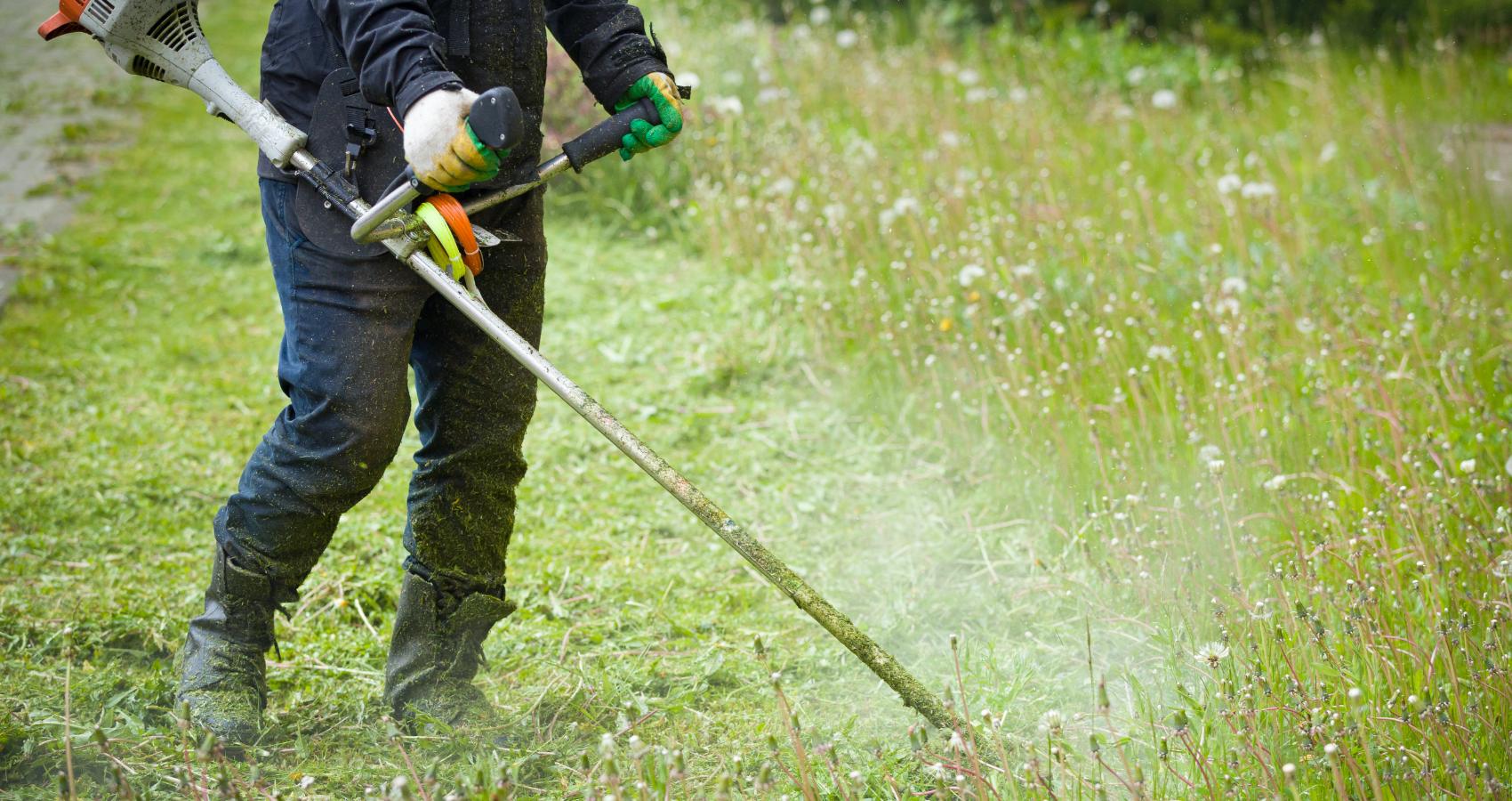 Vegetation Management services provided by Gothic Landscape