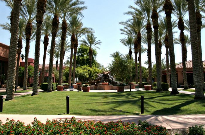 Gothic is proud to offer landscape design services across Arizona.